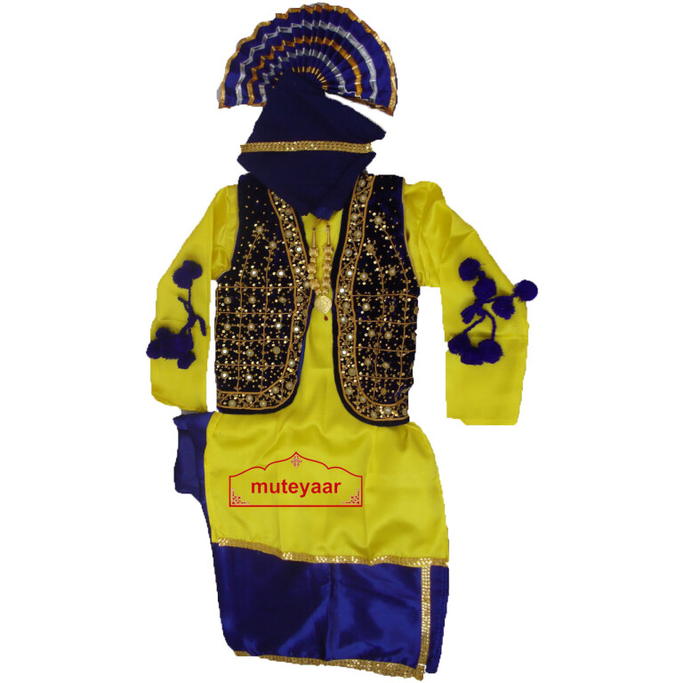 Bhangra dance Costume / outfit - ready to wear