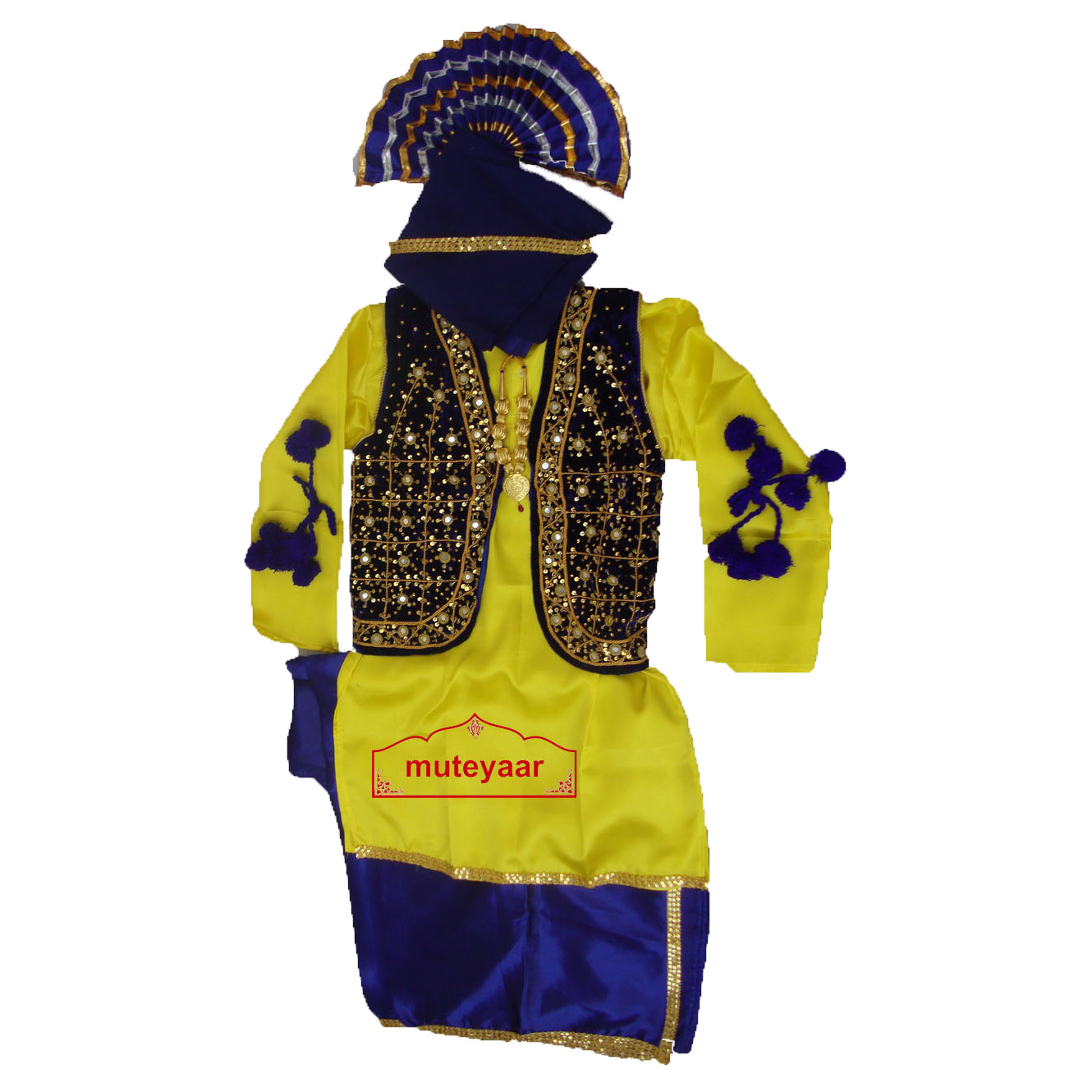 Bhangra dance Costume / outfit - ready to wear 1