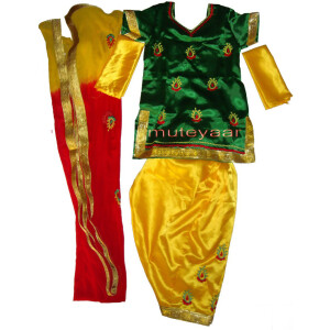 3DG Girl's embroidered Bhangra Costume outfit dance dress !!