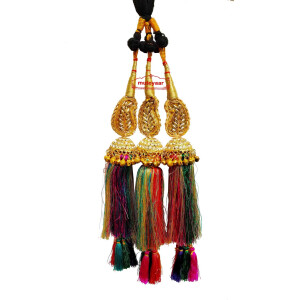 Zircons Studded Colourful Paranda Parandi