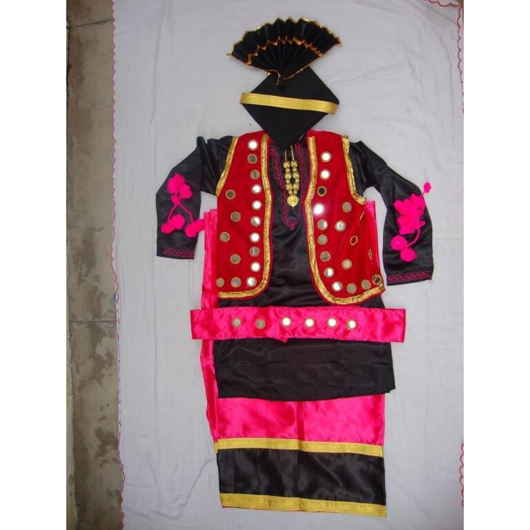Big Mirrors Work Bhangra Costume dance dress - custom made
