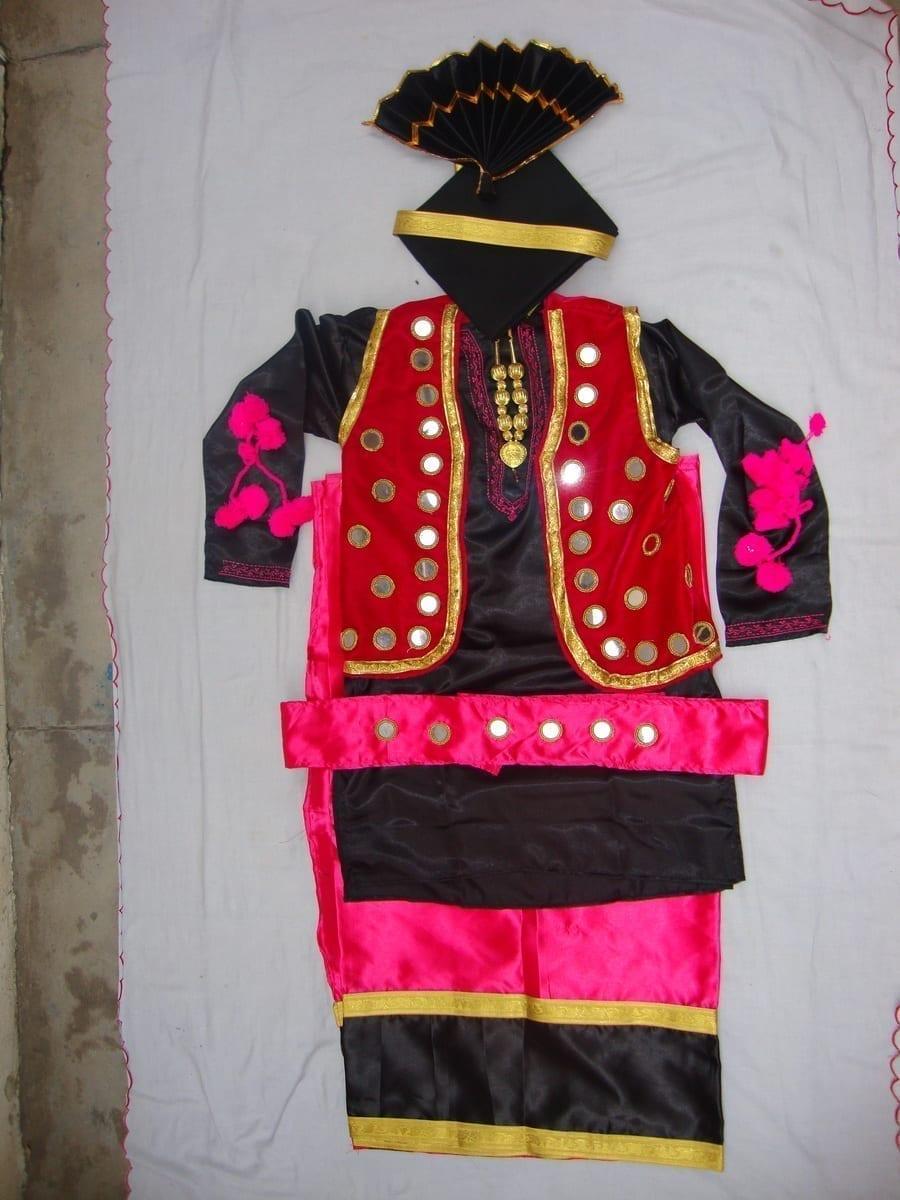 Big Mirrors Work Bhangra Costume dance dress - custom made 1