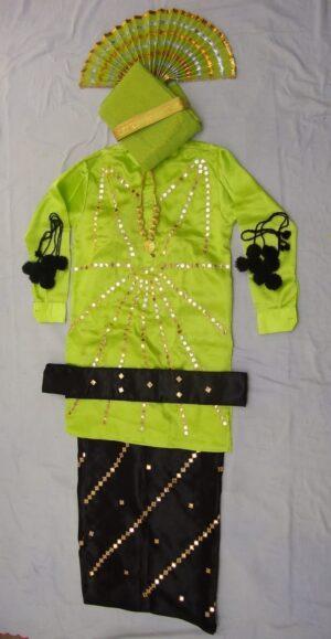 Heavy Mirror Work Bhangra dance costume dress – custom made !!