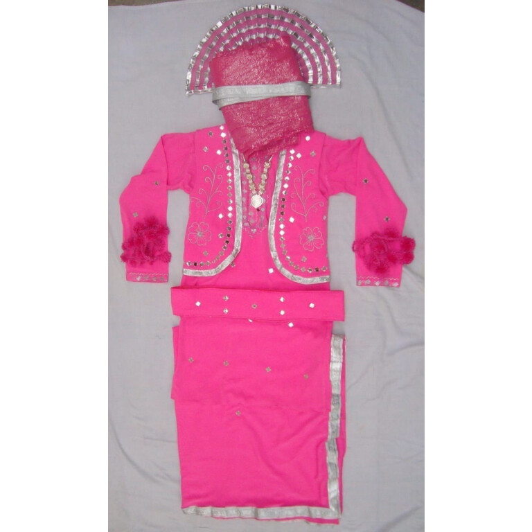 Pink Mirrors work Bhangra dance dress outfit costume