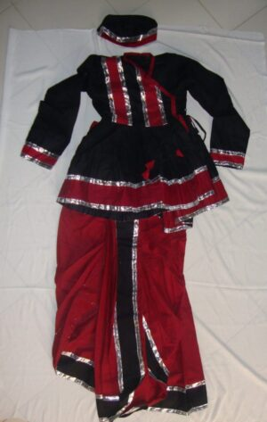 Custom made Gujarati Dandiya dance Costume / outfit dress