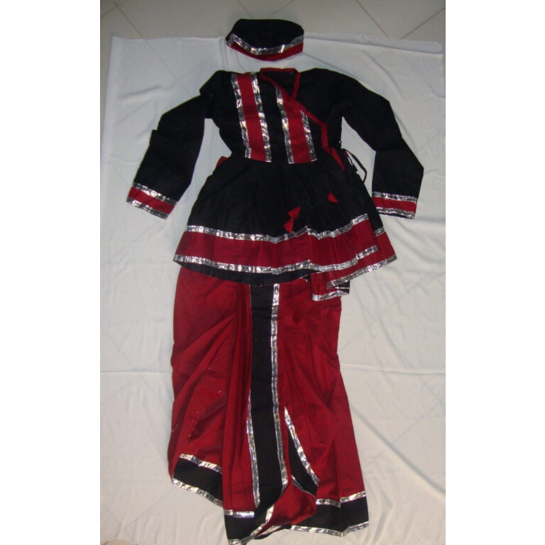 Custom made Gujarati Dandiya dance Costume / outfit dress