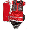 Girl's embroidered Bhangra Costume outfit dance dress - custom made !!