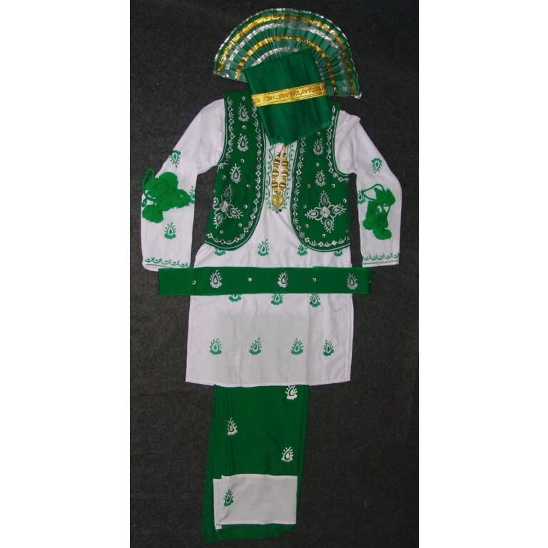 Green White Bhangra Dance Costume outfit dress ready to wear