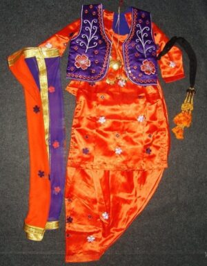 Girl's embroidered Bhangra Costume outfit dance dress – custom made !!