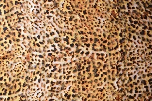 GEORGETTE PRINTED fabric for Kurti, Saree, Salwar, Dupatta (per meter price)  GF049