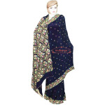 Pure Chiffon Black Phulkari Saree Hand Embroidered Wedding Wear S37