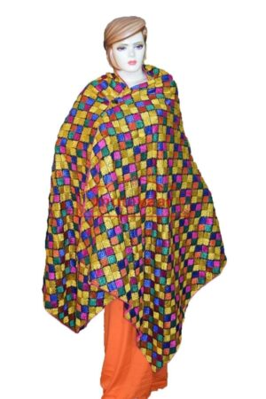 Multicolour M/C Phulkari Bagh Embroidered Party Wear Dupatta D0913