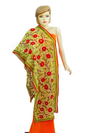 Kantha Work Hand Embroidered Partywear Georgette Stole D0945