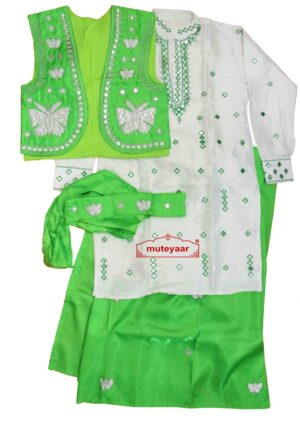Butterfly Design Embroidered Bhangra Costume Outfit Dance Dress