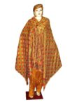 Phulkari Bagh Hand Embroidered multicolor dupatta D0713