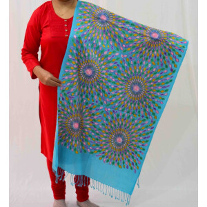 Firozi Kashmiri Stole Multicolour Embroidery Work pure wool Pashmina wrap C0683