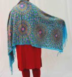 Firozi Kashmiri Stole Multicolour Embroidery Work pure wool Pashmina wrap C0683