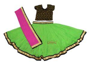Bollywood Chiffon Lehenga Choli Dance Costume BLC1