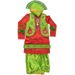 Bhangra Costume with customized embroidery